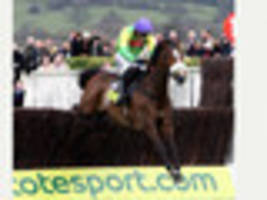 talking point: is it impossible for a horse to come back to its...